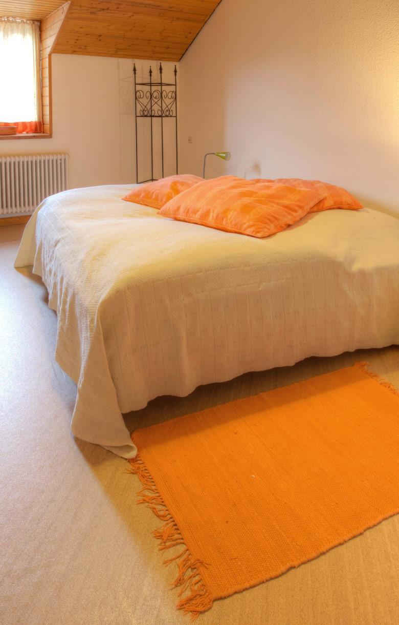 Schloss-Hamm-Ferienwohnung-Foerster_NEU_1_780x1220